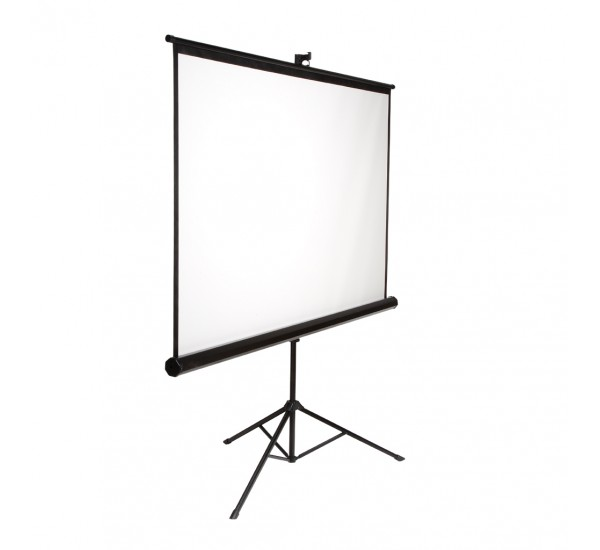 50 x 50 Projector Screen